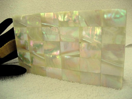 Evans 1940 mother of pearl compact carry all purse